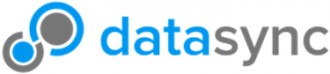 Datasync Logo